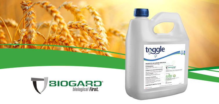 Biogard - Toggle®: accendi il turbo nelle tue colture.