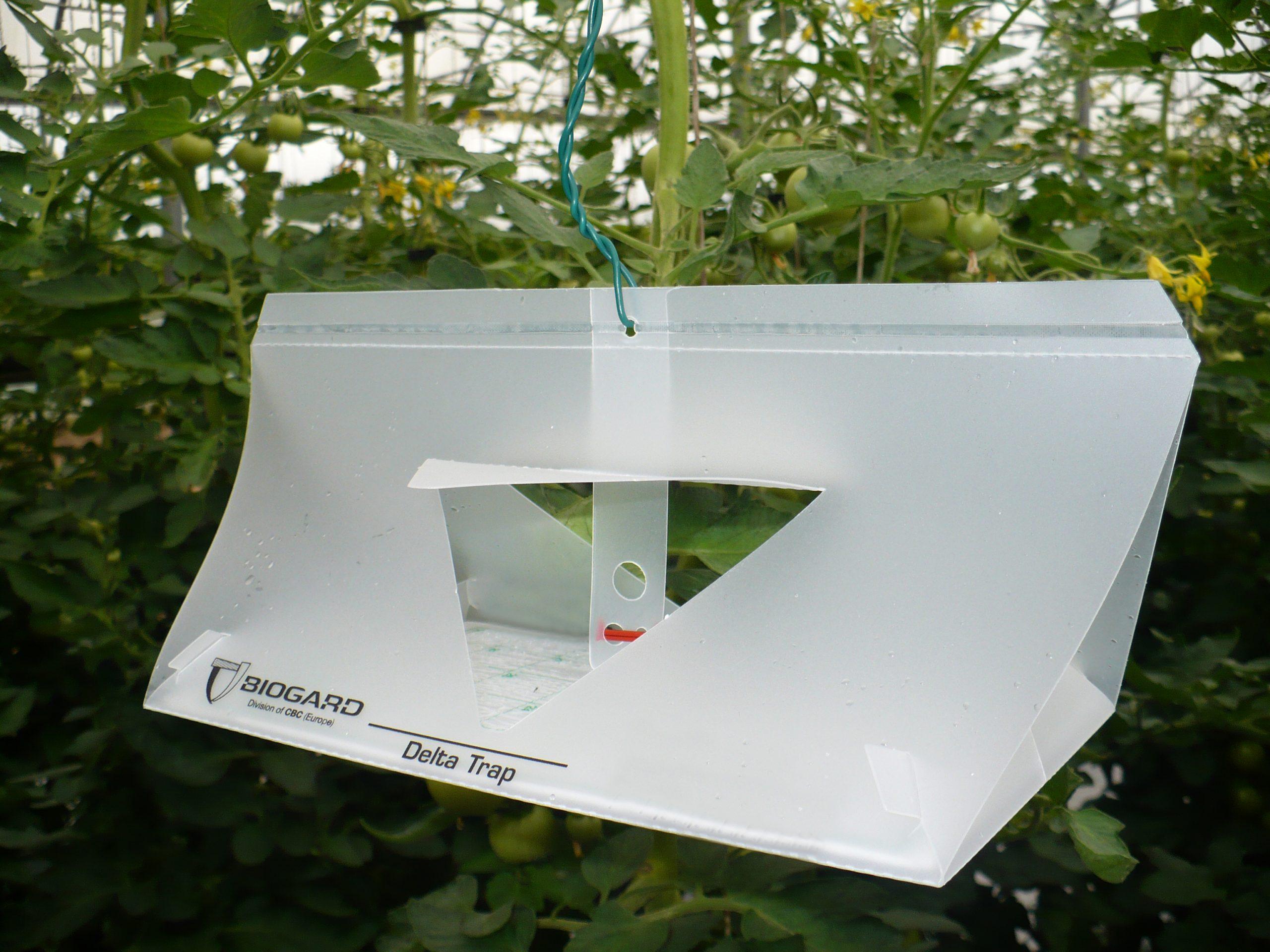 Biogard - Monitoraggio