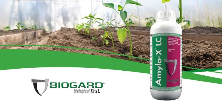 Biogard - Amylo-X® LC