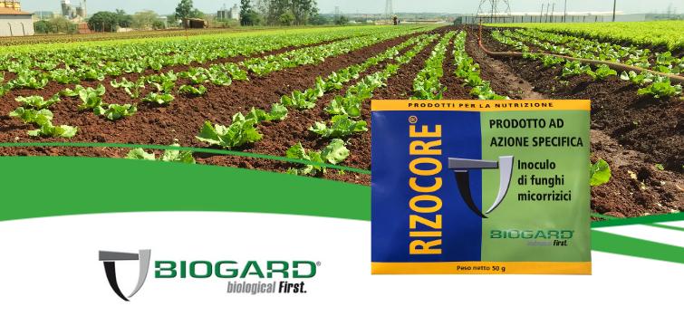 Biogard - Rizocore®: prodotto ad azione specifica inoculo di funghi micorrizici